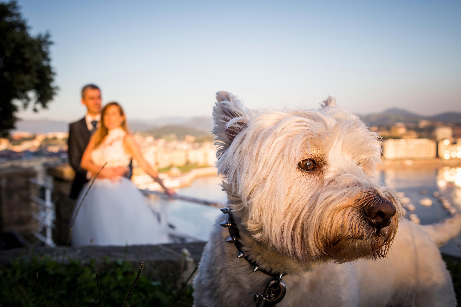 Wedding & Event Planner - Destination Wedding en San Sebastián - Boda Lara y Gelo 01